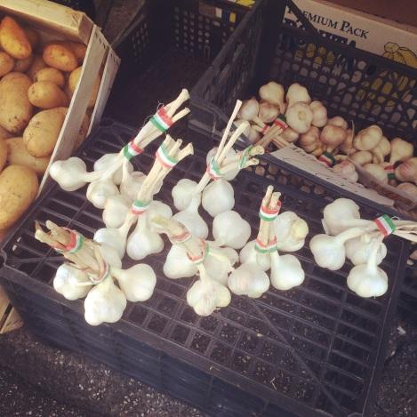 Italy-garlic